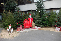 Am 6. Dezember ist Nikolaustag.