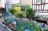 Der Storchenplatz wurde in diesem Jahr dem langjährigen Gärtnerobermeister und Mitbegründer dieser Sommeraktion Dieter Stegmeier gewidmet. Alle Gartenbaubetriebe haben hier gemeinsam mit Vitus König einen blühenden Hügel mit kommunizierenden Röhren entwickelt.