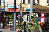 """Die Gärtnerei Lessle hat unter dem Motto """"Kraft der Sonne"""" vor dem Reichsstädter Markt unter den großen Glasschirmen einen schönen Platz gestaltet. Unterstützt wurde sie vom Sanitärbetrieb Martin Becker und durch die Firma Holzbau Höfer."""