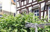 """Die Gärtnerei Goldammer hat mit dem Steinmetzbetrieb Haschka den Platz an der Ritterschule gestaltet. Motto: """"Selbstgemacht""""."""