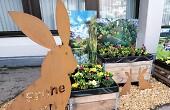"""Auf diesem Bild sind Metallhasen zu sehen, einer von ihnen trägt den Schriftzug """"Frohe Ostern"""". Sie sind rund um die österlich dekorierten Hochbeete drapiert, die derzeit vor dem Aalener Rathaus stehen."""