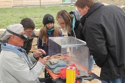 Das präparieren von Fossilien wird den Besucherinnen und Besuchern genau erklärt.