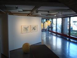 """Auf diesem Bild ist ein Teil der Ausstellung """"Bienenflug"""" in der Rathausgalerie zu sehen."""