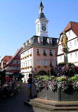 Das Urweltmuseum im Alten Rathaus mit Spionturm