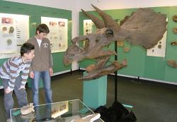 Interessierte Kinder vor einem Fossil