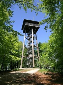 The Aalbäumle wooden tower
