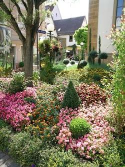 """Die Aktion """"Aalen City blüht"""" verwandelt die Aalener Innenstadt alle zwei Jahre in ein Blütenmeer."""