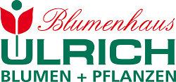 Blumenhaus Ulrich
